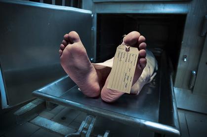 Dead photo via Shutterstock