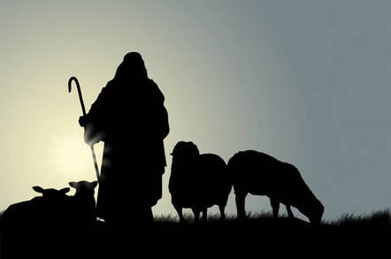 Shepherd and sheep - Pic: Shutterstock