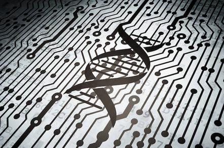 DNA circuit board