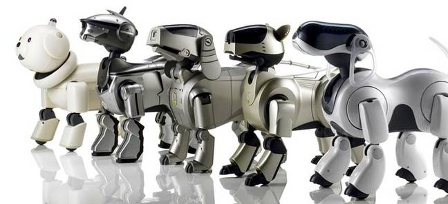 Earlier models of the Sony Aibo: enough to stroke terror into the heart of any postman