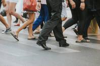 Walking Legs by Shutterstock