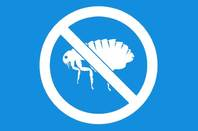 No bugs sign