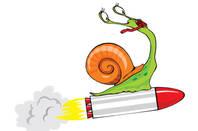 Shutterstock Rocket Snail