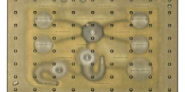 MIT organ on a chip, Image: Felice Frankel