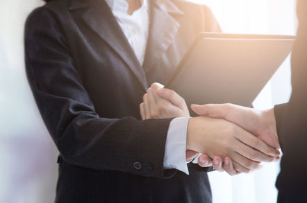 Man and woman shake hands - business deal