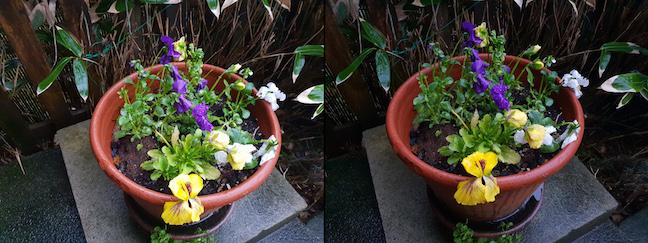 Samsung S9 flowers composite
