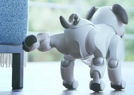 Aibo robot dog relieving itself on a chair, adorably