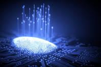 A digitized fingerprint