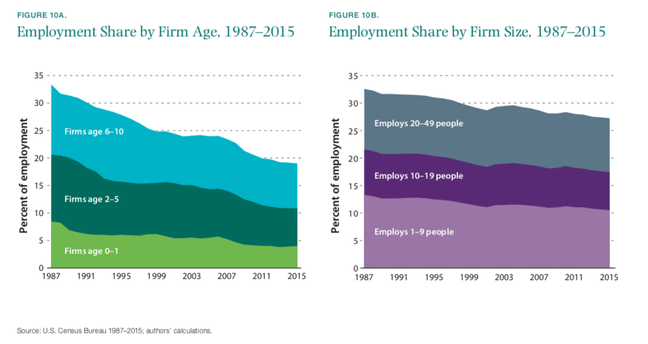 Brookings employment and firm age