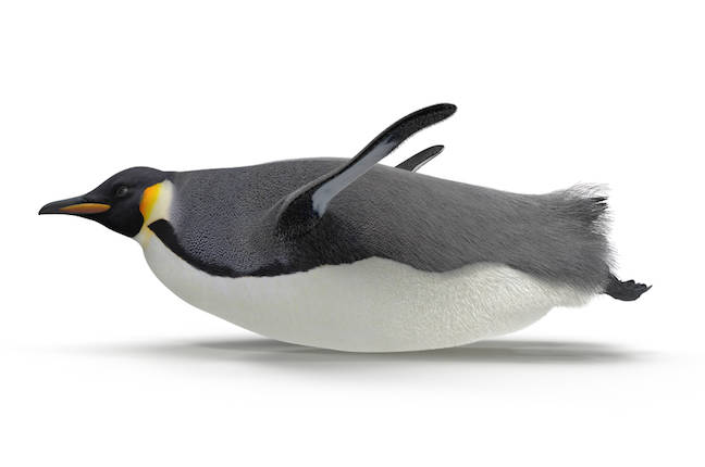 Linus Torvalds reluctantly issues one more release candidate for Linux kernel 5.12