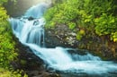 Stream waterfall in a forest