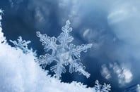 Digital composite of snowflakes and frost