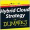 HybridCloudStrategy