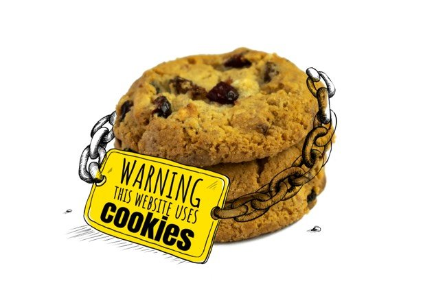 theregister.co.uk - Rebecca Hill - Public disgrace: 82% of EU govt websites stalked by Google adtech cookies - report • The Register