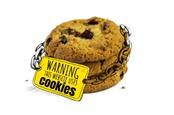 web cookie illustration