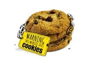 web cookie illustration