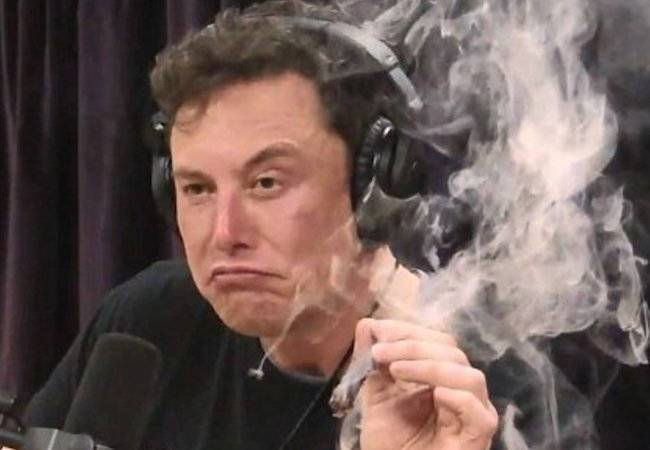 screenshot_musk_spliff.jpg