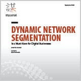 DynamicNetworkSegmentation