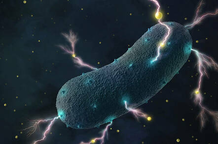 electric_bacteria