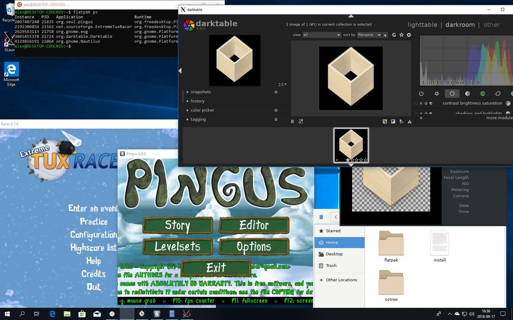 [Flatpak-Linux]Bedlam version download