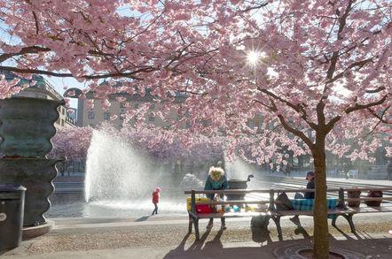 Kungstradgarden in stockholm sweden