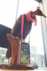 Is that an iPhone in your lanyard or are you just happy to see me? Reg the vulture strikes a moody poses with the kit.