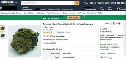 Amnesia on Amazon