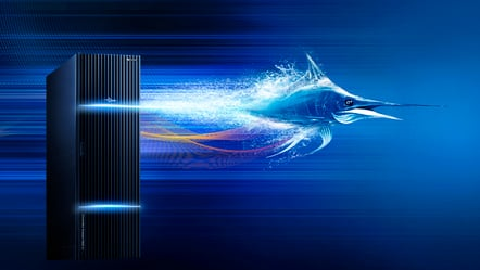 Server Swordfish