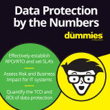 data_protection_by_the_numbers_fd