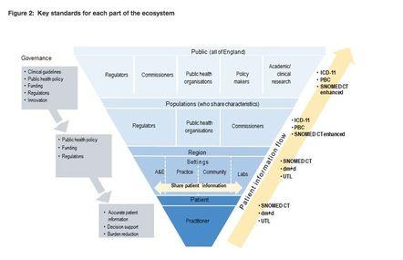 Figure of patient information flow