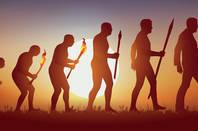 evolution_human