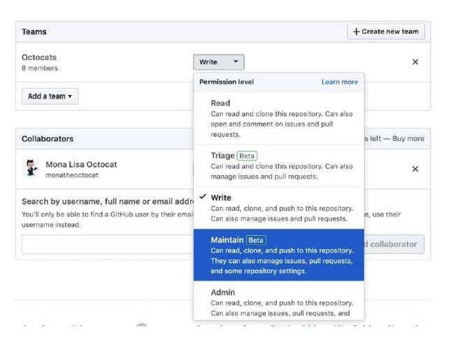 New user roles in Github Enterprise