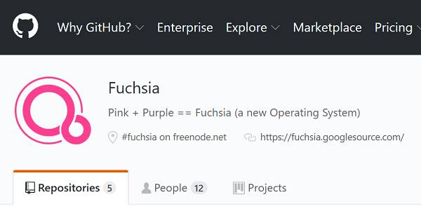 Google's Fuchsia OS Flutters into view: We're just trying