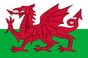 Wales flag with official colours
