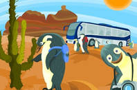 southern canonical penguins on their summer holidays