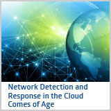NetworkDetectionAndResponseInTheCloud