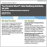 The_Forrester_Wave_Data_Resiliency_Solutions_Q3_2019