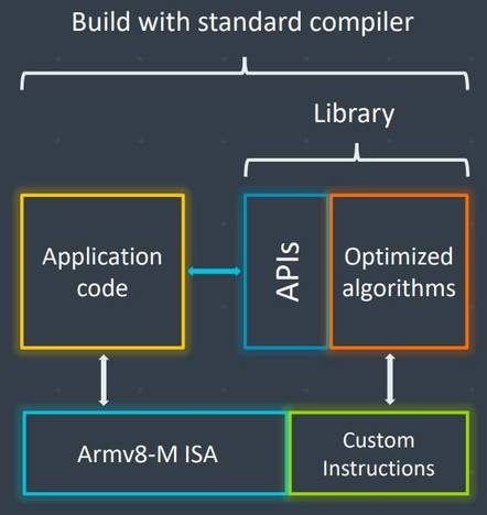 Arm's overview of custom instruction abstraction