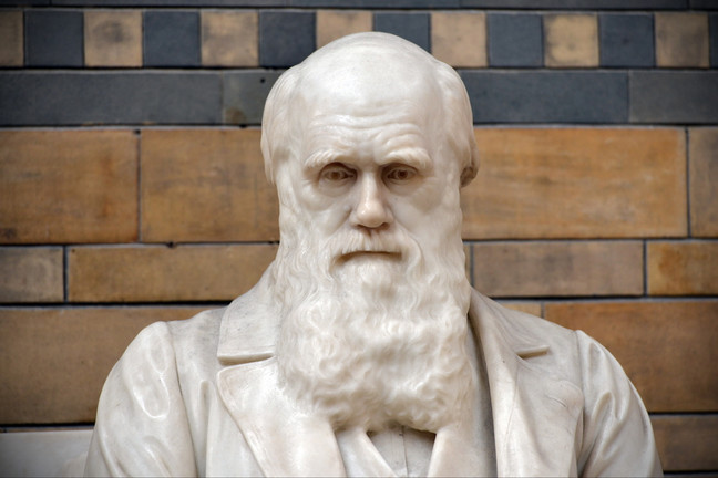 Beardy biologist's withering takedown of creationism fetches $564,500 at auction