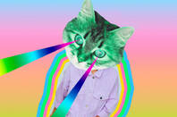 rainbow cat - psychedelic  art