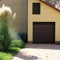 house in Surrey suburban neighbourhood, pampas grass in the driveway