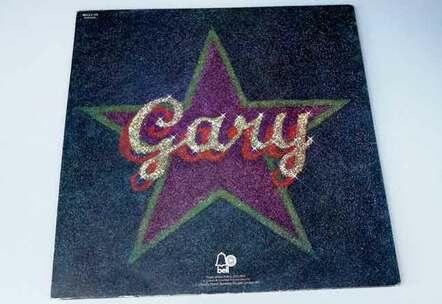 Glitter album back vinyl