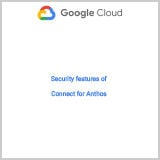 security-features-for-connect-for-anthos