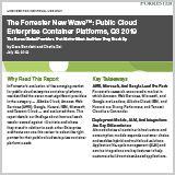 The_Forrester_New_Wave_Public_Cloud_Enterprise_Container_Platforms_Q3_2019