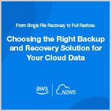 N2WS-GUIDE-choosing_a_backup_tool
