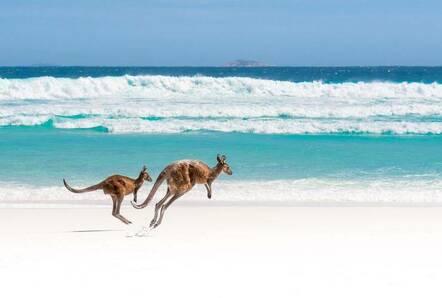 tourism australia free zoom background