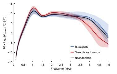 Fig. 2 SPt in modern humans, the SH hominins and Neanderthals. Continuous lines represent the means and coloured areas show ±1 s.d.