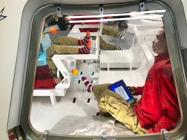 We've finally got one, folks: A NASA bork