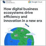 Digital_Business_Ecosystems_Executive_Summary
