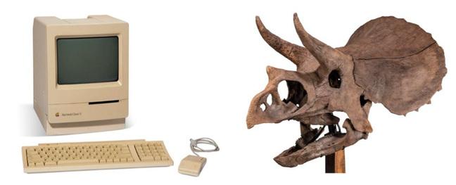 Macintosh Classic II and triceratops skull